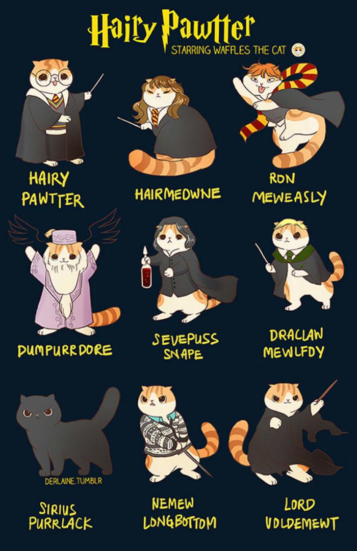 Personagens da cultura pop como gatos