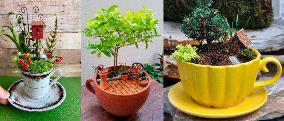 Pequenos belos jardins em xícaras