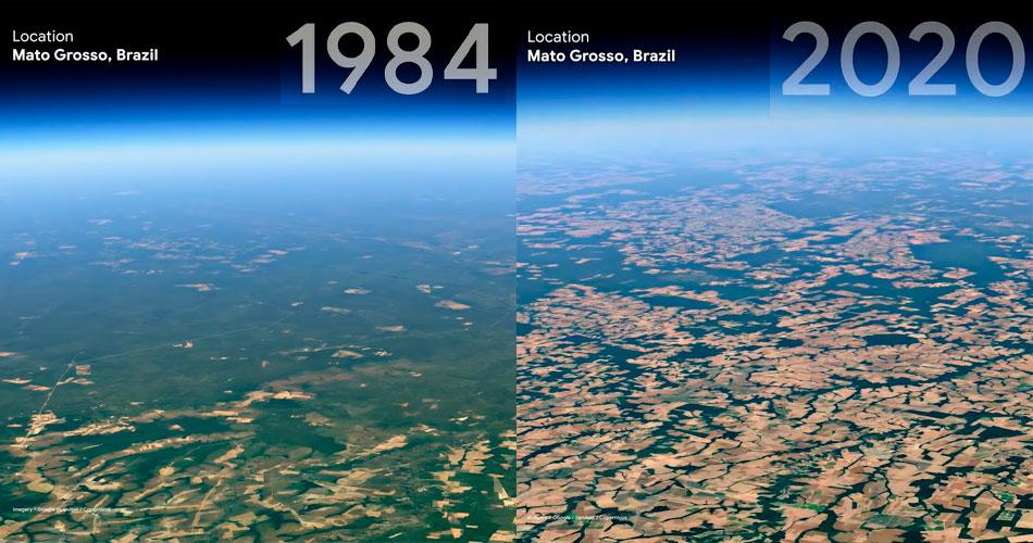 O impacto humano na Terra: Cidades, Oceano e Florestas