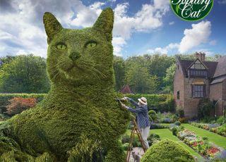 Artista cria digitalmente arbustos na forma de gato para homenagear seu falecido gatinho