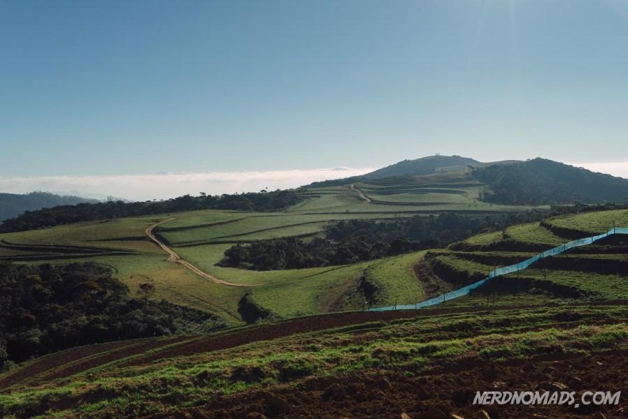 Farm_Nuwara_Eliya