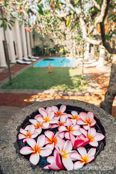 Flowers_Galle_Fort_Hotel