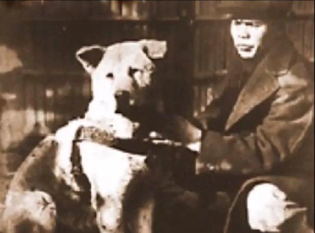 Hachiko avec son meilleur ami et propriétaire