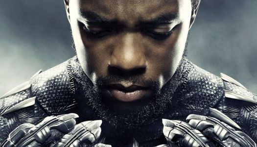 Black Panther: A Worthy Addition to the MCU?