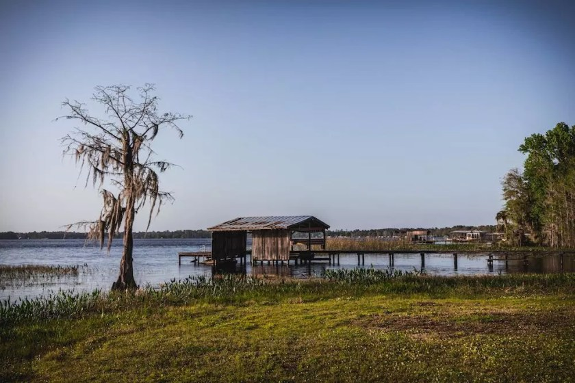 A swampy slope down into a lake with a pier and wooden boathouse, and a tree hanging with Spanish moss