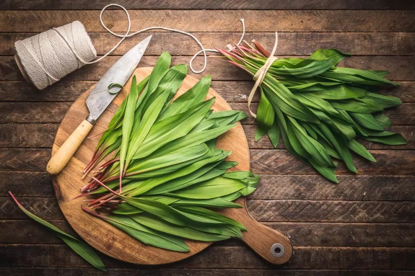 Ramps (wild garlic)