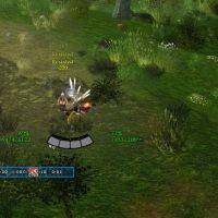 How to get LotRO plugins to work
