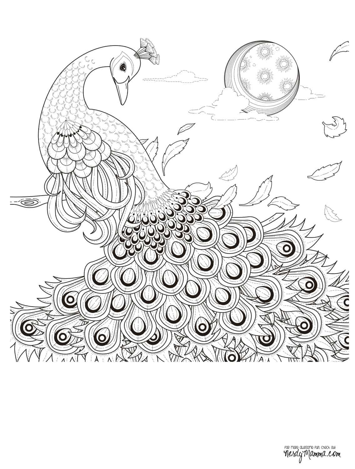 11 free printable adult coloring pages for Coloring page peacock