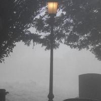 """Impressioni Letterarie #10: """"Le Cronache di Narnia - C.S. Lewis"""""""
