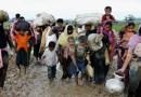 असम में रोहिंग्या शरणार्थियों के प्रवेश की आशंका, हाई अलर्ट जारी