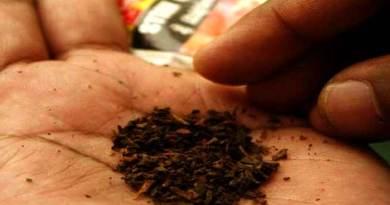 असम, त्रिपुरा और मणिपुर में तंबाकू का इस्तेमाल बढ़ा: जीएटीएस रिपोर्ट