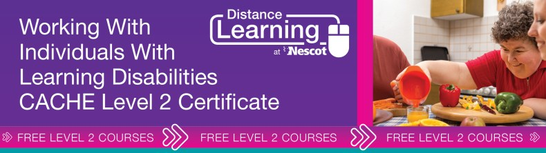 00762_Distance_Learning_Course_Sheet_Level_2_Working_With_Individuals_With_Learning_Disabilities_AW