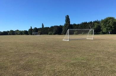 pitch sporting 7