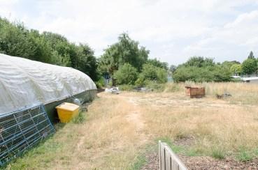 rustic farm walkway 5
