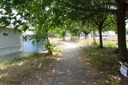 rustic walkway farm