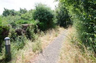 rustic walkway