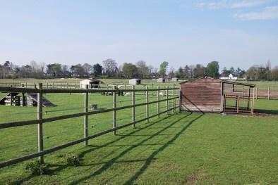 film loc farm 4