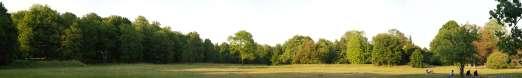 LandscapesGreen0028_600