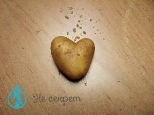 Как действует картофельный крахмал на кожу лица