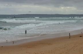 phillip-island-australia-beach