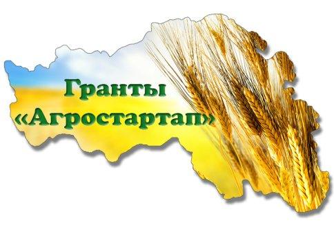 «Агростартап» в Самарской области