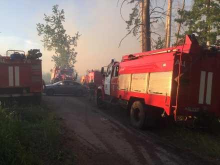 В Тольятти на площади 3,2 га горел лес