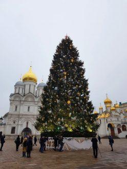 Впервые жители Самарской области смогут попасть на Кремлёвскую ёлку