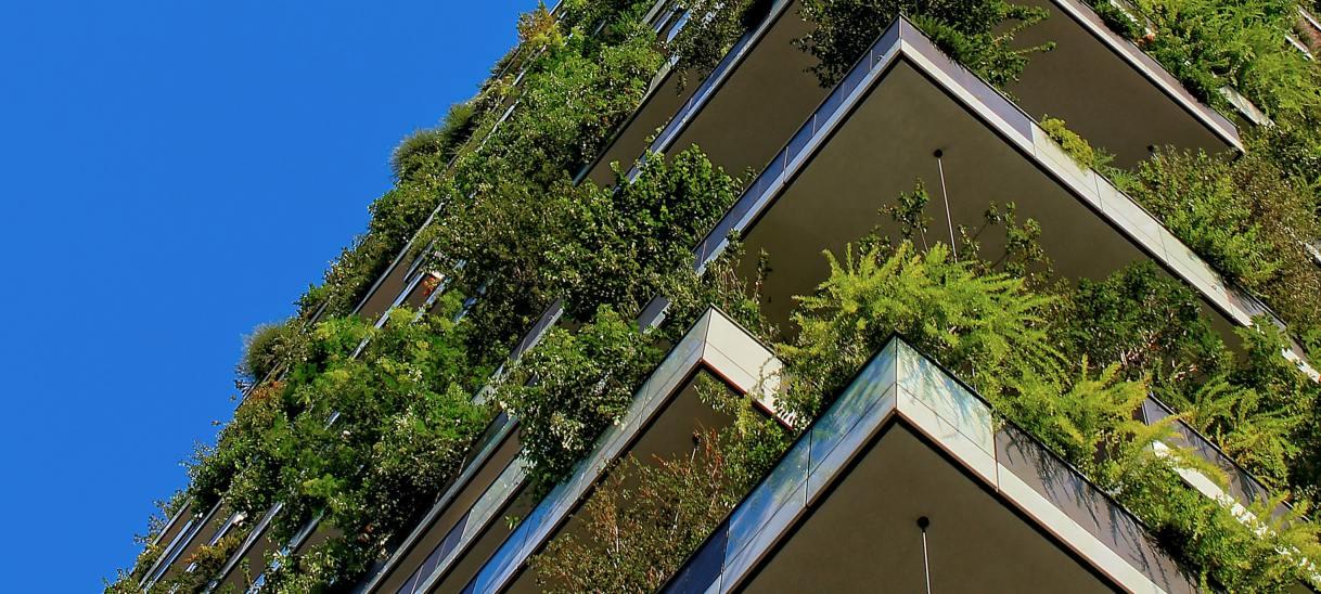 Balancing greener, denser cities