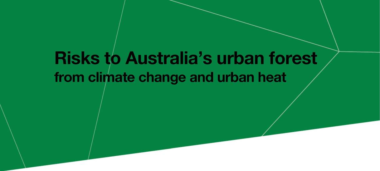 Risks to Australia's urban forest from climate change and urban heat