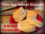 Two Ingredient Biscuits