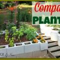 Companion Planting - Nest Full of New