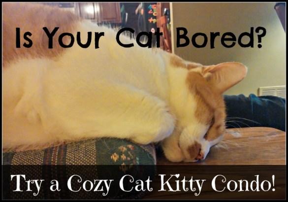 Cozy Cat Kitty Condo