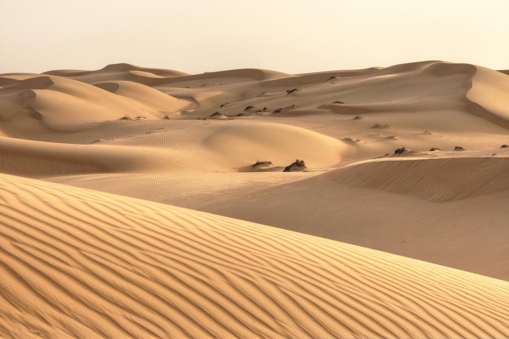 Poetry: Sands of Arabia