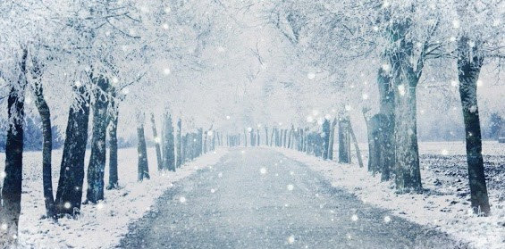 Winters Embrace Poem