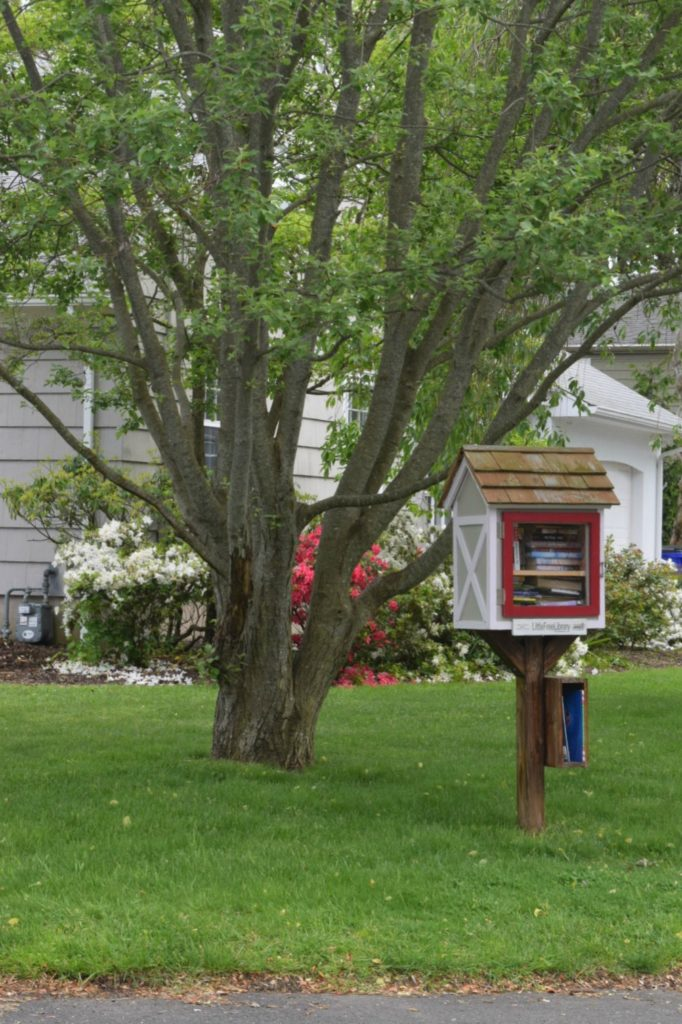Book Stand-Exterior Paint Colors for Homes- New England Style