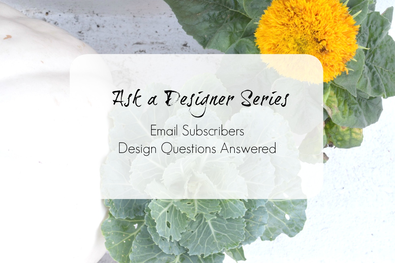 Ask a Designer Series- Email Subscibers Design Questions Answered