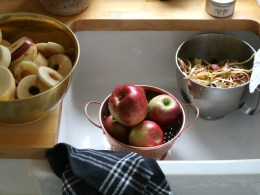 Fall Favorites and Apple Sauce Recipe