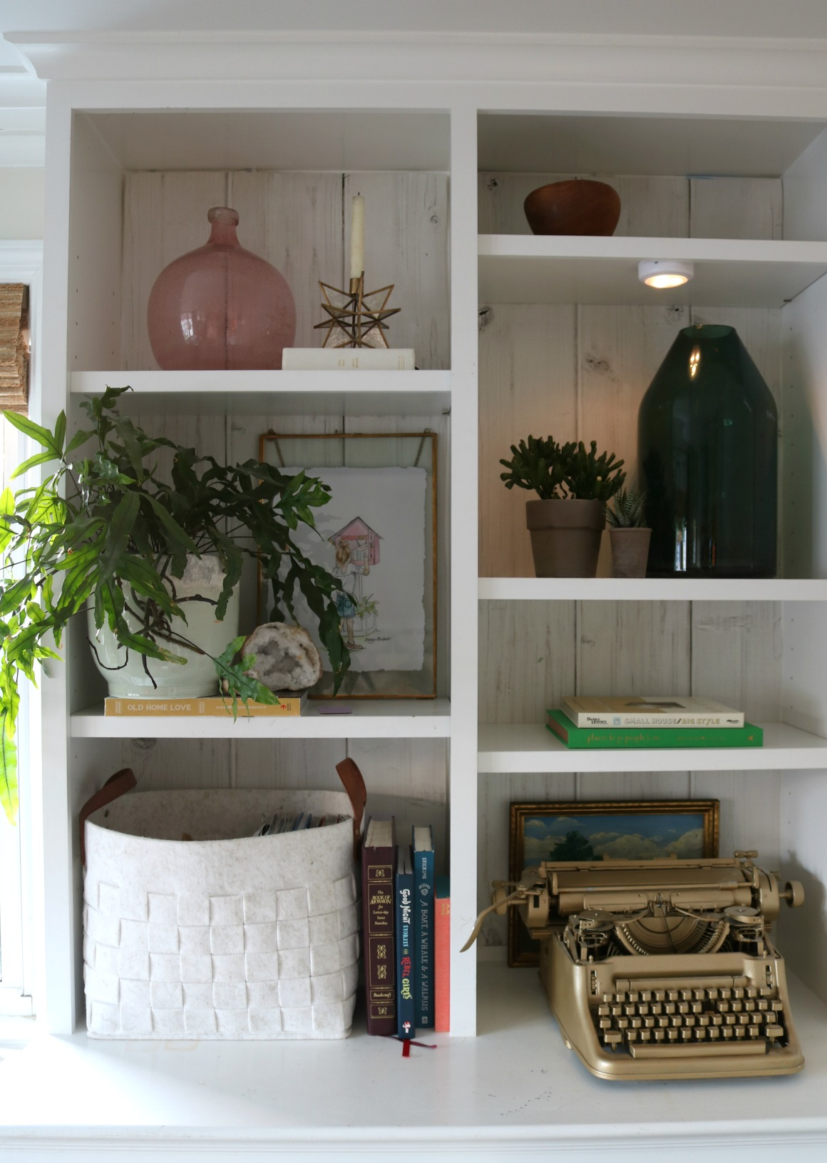 Easiest Houseplants to keep alive- Why I LOVE houseplants