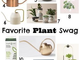 Favorite Plant Swag