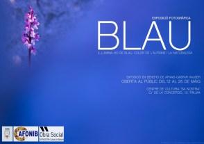 EXPOSICIÓN BLAU