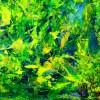 Changes -Translucent Yellow by Nestor Toro