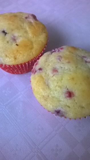 muffini-sa-brusnicama-2