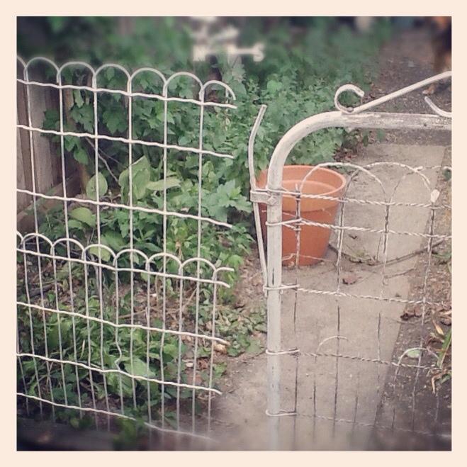 Vintage wire garden fence &gate