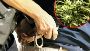 Hapsenje-marihuana-620x350