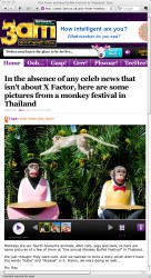 **TEARSHEET FROM THE 3AM WEBSITE** A monkey leaps across a money statue during the annual 'monkey buffet festival' at the Phra Prang Sam Yod (The Three Crests Phra Prang) in Lopburi province. The festival is held annually on the last Sunday of November to promote tourism.