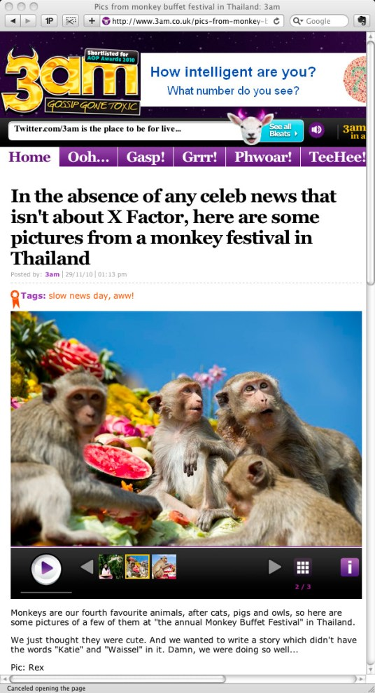 **TEARSHEET FROM THE 3AM WEBSITE** Monkeys enjoy eating from pyramid made of fruit during the annual 'monkey buffet festival' at the Phra Prang Sam Yod (The Three Crests Phra Prang) in Lopburi province. The festival is held annually on the last Sunday of November to promote tourism.