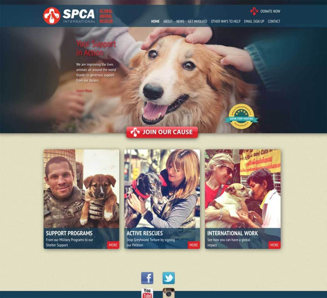 SPCA International Website Link
