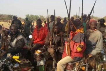 Face à face tendu entre manifestants pro-Koglweogo et Forces de défense et de sécurité