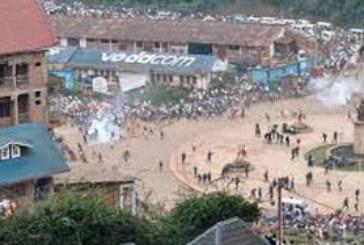 RDC : des milliers de gens dans les rues de Kinshasa après la victoire des Léopards à la CHAN 2016