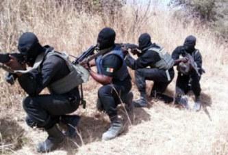 Afrique du Sud: L'Afrique du Sud dément l'envoi des militaires au Nigeria pour combattre Boko Haram